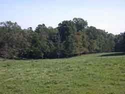 Mitchell-River-Area-3