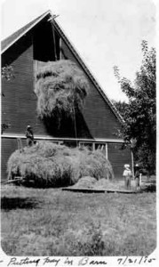 Putting-Hay-in-Dykstra-Barn11